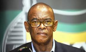 DA submits hate speech complaint against Magashule at the Equality Court