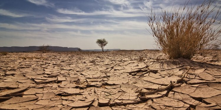 DA implores CoGTA Minister to urgently enact drought management interventions