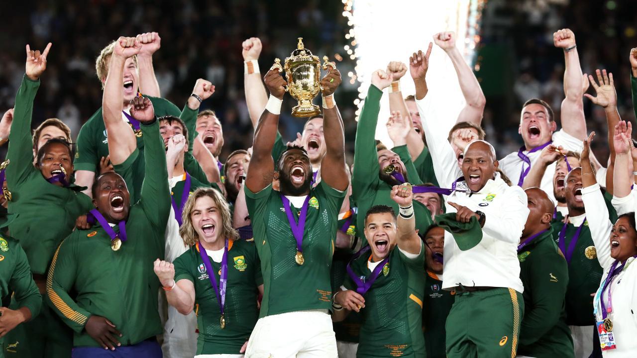 DA tribute to the Springboks