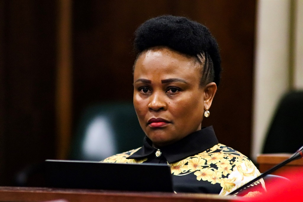 DA requests fresh Public Protector removal proceedings, following Parliament's adoption of rules