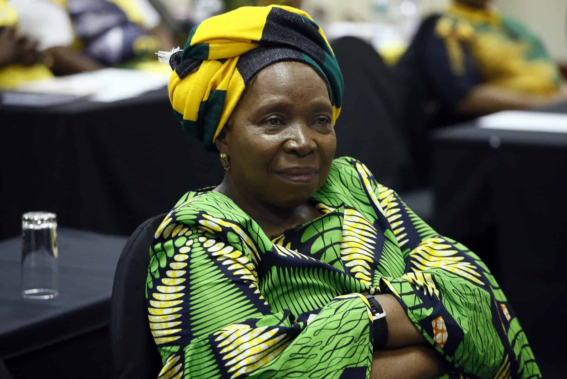 Minister Dlamini-Zuma lied to the nation and must be fired.