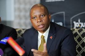 ANC's premeditated thuggery denied people the opportunity to hear Mashaba's plans for Alex
