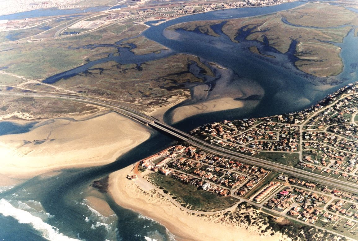 DA to bring the pollution of the Swartkops River and Estuary to the attention of National Parliament