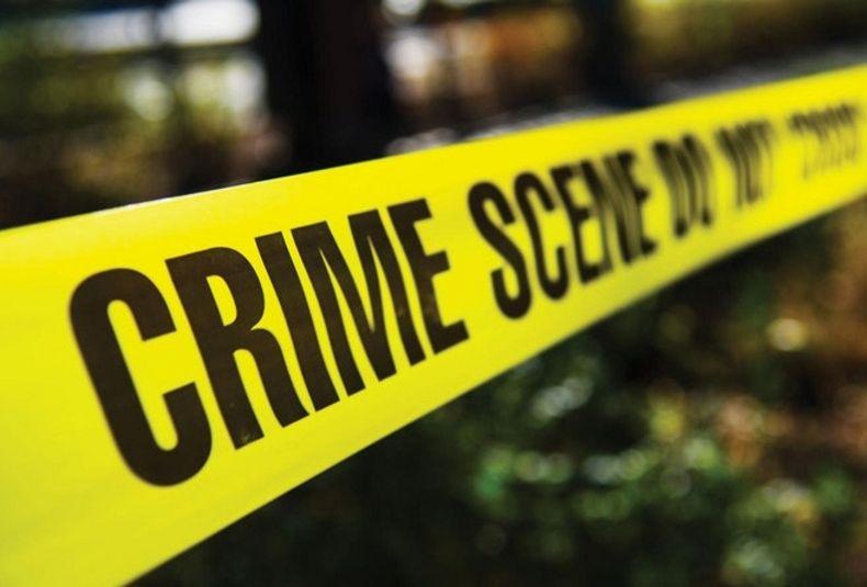 Farm attacks plague the Sarah Baartman District