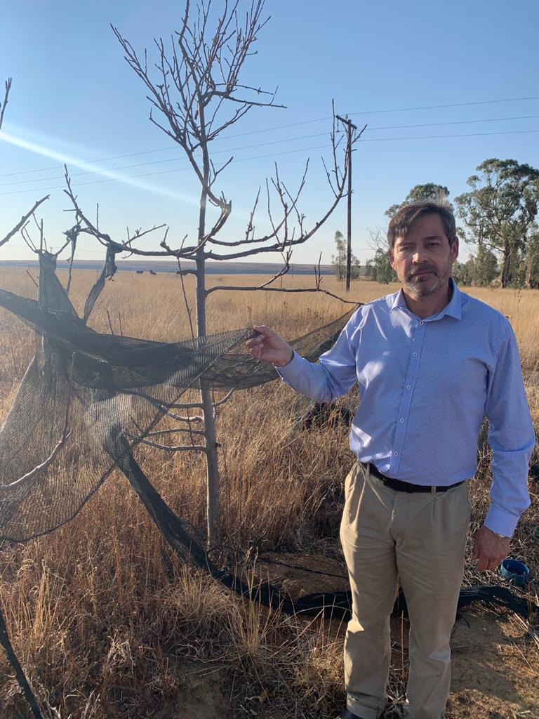 No ploughing but much plundering on Free State agricultural projects